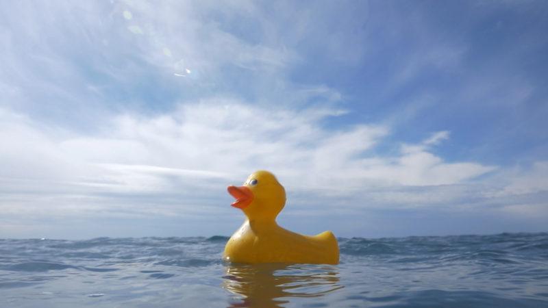 Océans, le mystère plastique