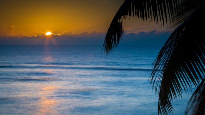 L'île de Praslin aux Seychelles